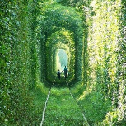 Conheça o Túnel do amor uma das maiores bele...