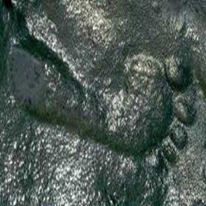 Pegadas de humanas de 290 milhões de anos sã...